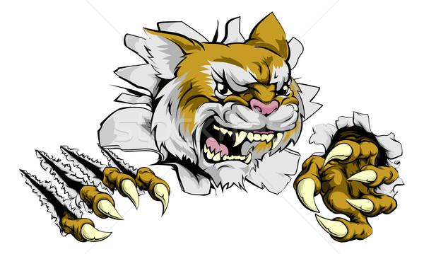 сердиться дикая кошка спортивных талисман жесткий пума Сток-фото © Krisdog