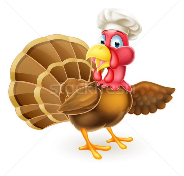 Rajz Törökország madár szakács mutat hálaadás Stock fotó © Krisdog
