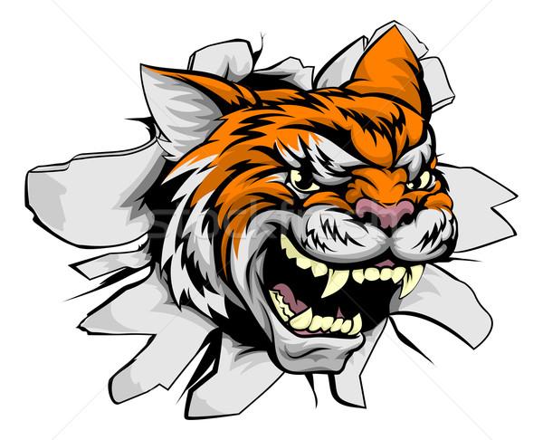 Сток-фото: тигр · голову · стены · животного · спортивных · талисман