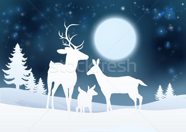 Deer Winter Scene Background Stock photo © Krisdog