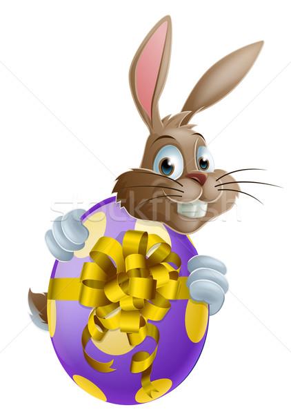 Húsvéti nyuszi tojás aranyos rajzfilmfigura tart festett Stock fotó © Krisdog
