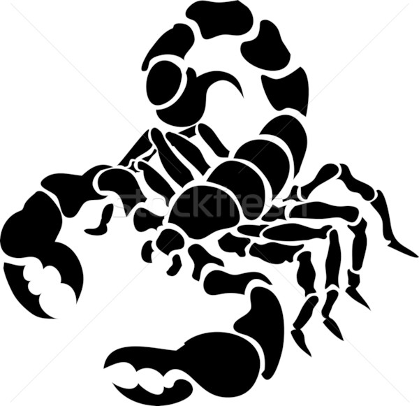 scorpion illustration Stock photo © Krisdog