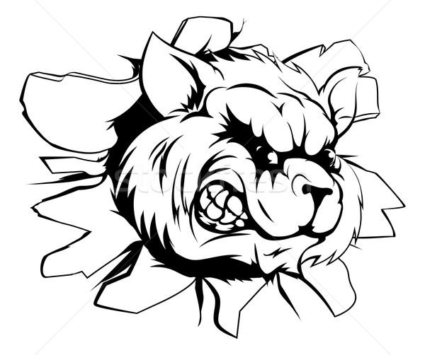 Wasbeer mascotte muur sport karakter uit Stockfoto © Krisdog