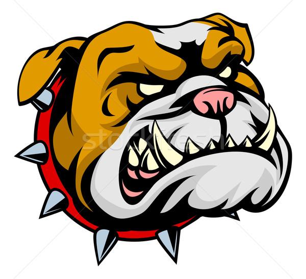 Bulldog Mascot Stock photo © Krisdog