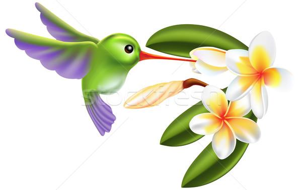 humming bird and flowers Stock photo © Krisdog