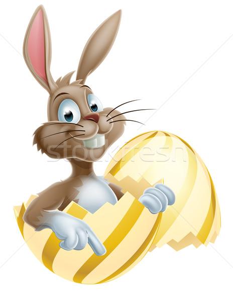 Easter Bunny ei cartoon vrolijk pasen bunny konijn Stockfoto © Krisdog