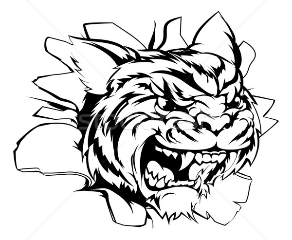 Tygrys sportowe maskotka na zewnątrz przełom ilustracja Zdjęcia stock © Krisdog