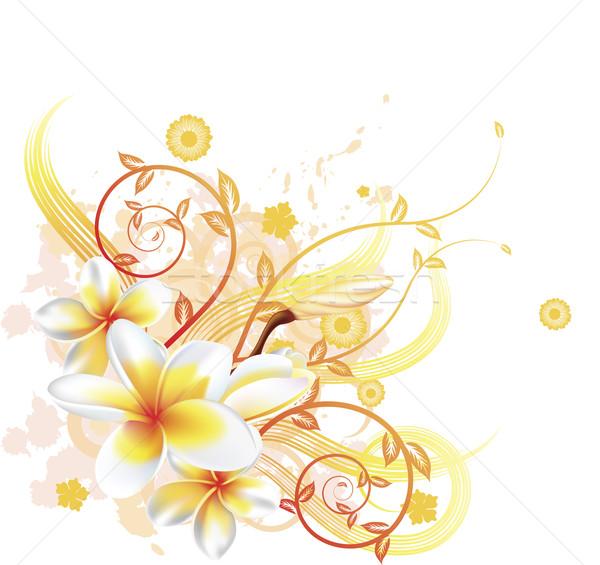 Cool floral background Stock photo © Krisdog