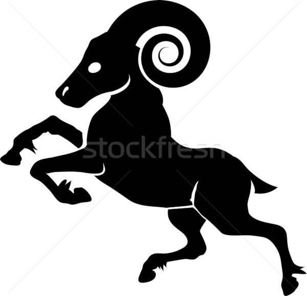 Widder Illustration monochrome Zeichen Beine Schafe Stock foto © Krisdog