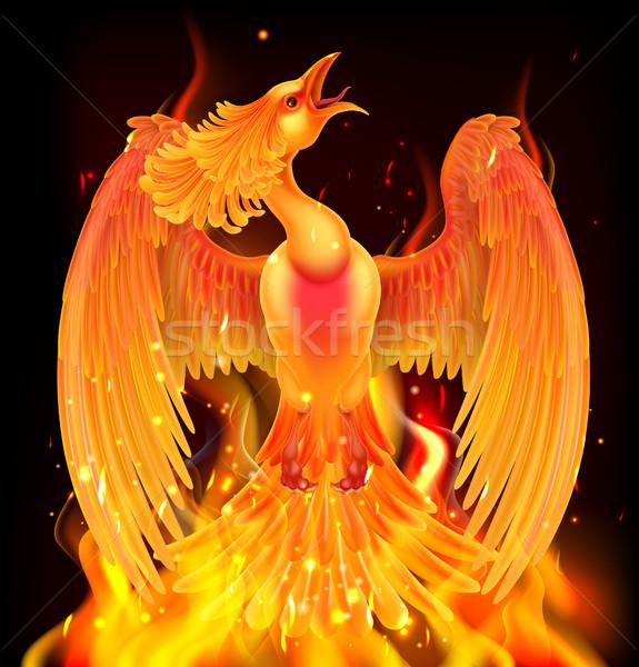 Phoenix vogel vlammen brand achtergrond Stockfoto © Krisdog