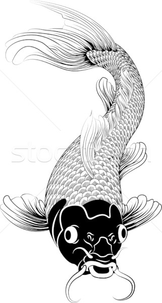Kohaku koi carp fish illustration Stock photo © Krisdog