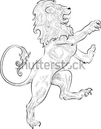 Lion Illustration Stock photo © Krisdog