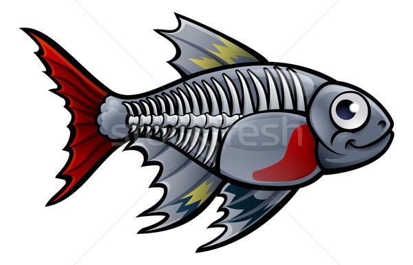 Xray pesce x ray animale acqua Foto d'archivio © Krisdog
