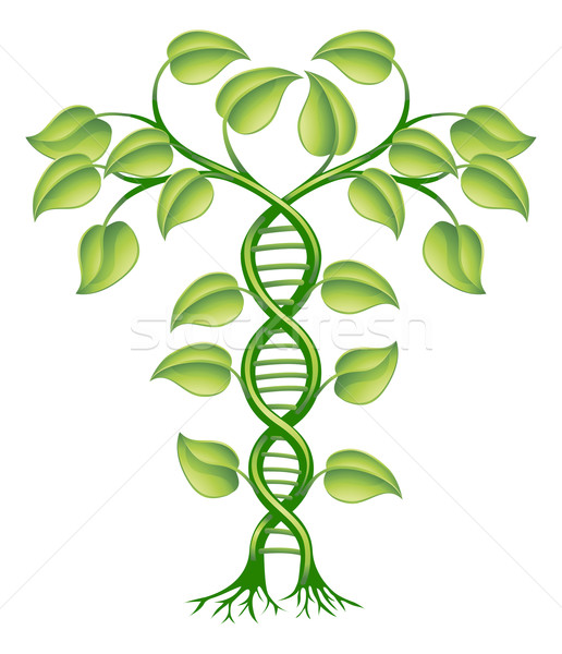 Stock photo: DNA plant concept