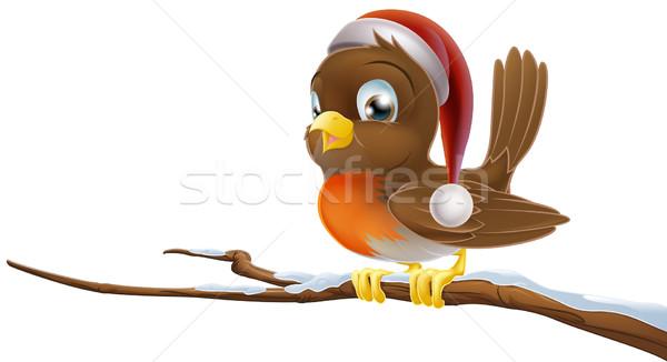 Christmas Robin Stock photo © Krisdog