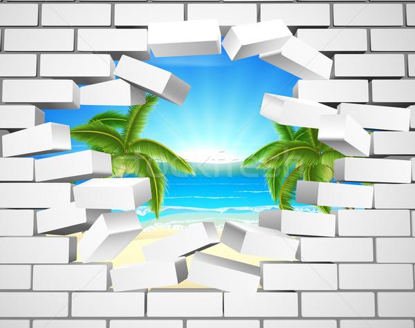 Stok fotoğraf: Tropikal · plaj · duvar · görünür · arkasında · beyaz · tuğla · duvar