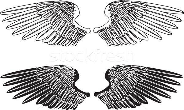 Blanc noir ailes illustration deux art ange Photo stock © Krisdog