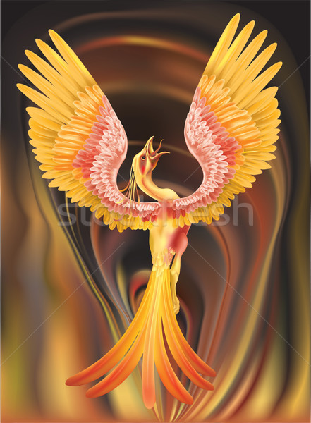 phoenix illustration Stock photo © Krisdog
