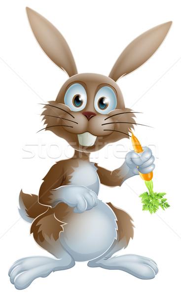 Konijn wortel cute cartoon bunny Easter Bunny Stockfoto © Krisdog