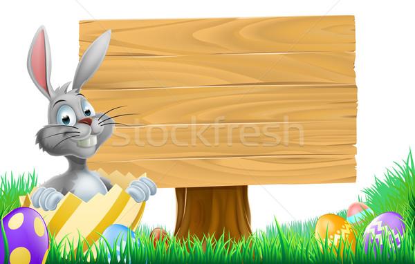 Cartoon Пасхальный заяц знак из украшенный шоколадом Сток-фото © Krisdog
