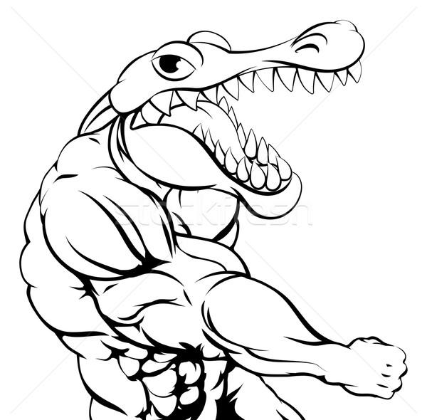 Aligator krokodyla maskotka pięść twarz sportu Zdjęcia stock © Krisdog
