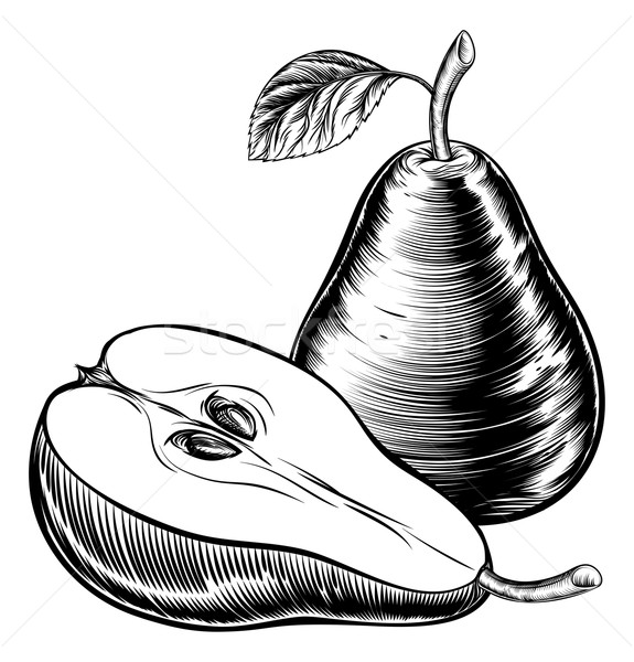 Vintage Woodcut Pears Stock photo © Krisdog