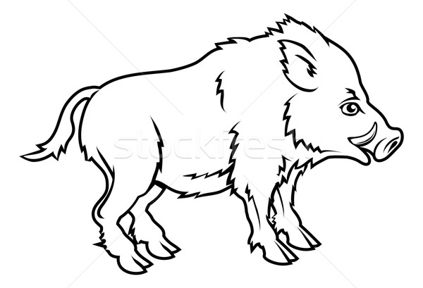 Stylised boar illustration Stock photo © Krisdog