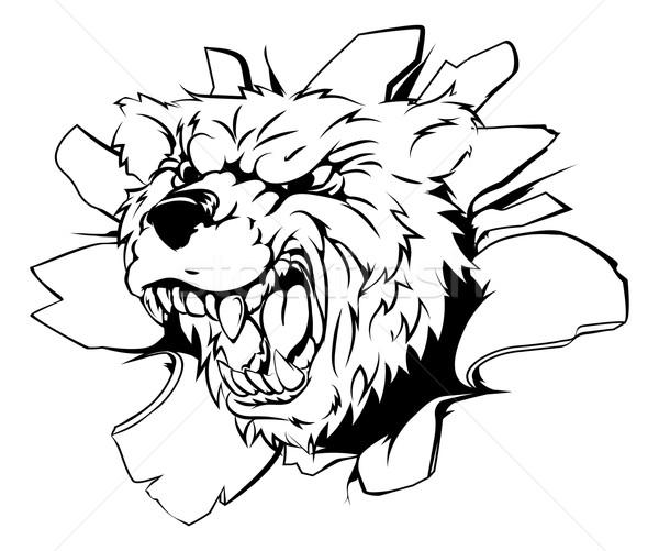 Medve kabala fal illusztráció állat klub Stock fotó © Krisdog