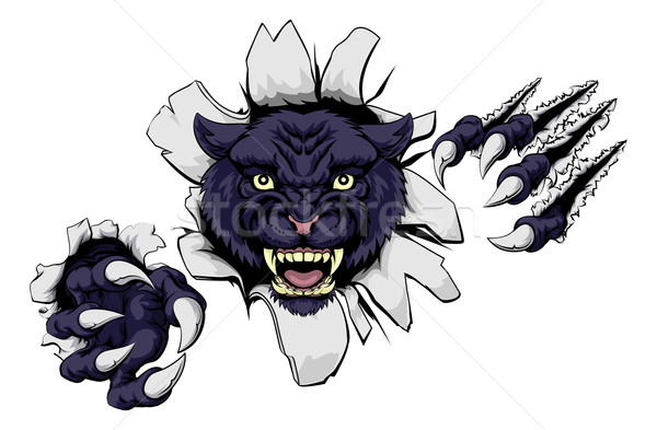 Negro pantera mascota Cartoon deportes pared Foto stock © Krisdog