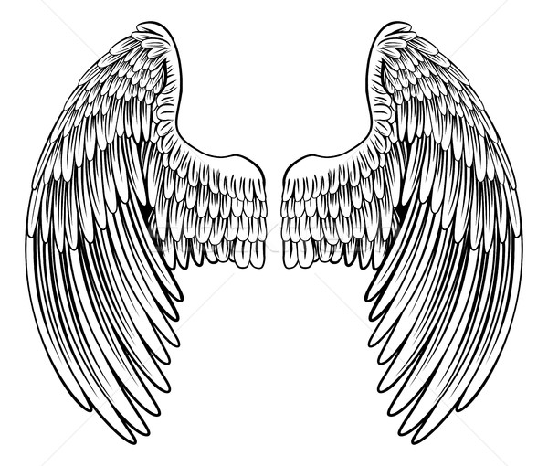 Pair of Angel or Eagle Wings Stock photo © Krisdog