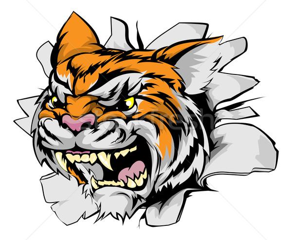 Tygrys głowie sportowe maskotka przełom charakter Zdjęcia stock © Krisdog