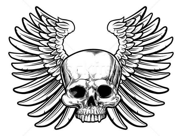 Skull with Wings Stock photo © Krisdog