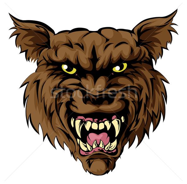 ストックフォト: 狼 · 見える · オオカミ · 男 · スポーツ · マスコット