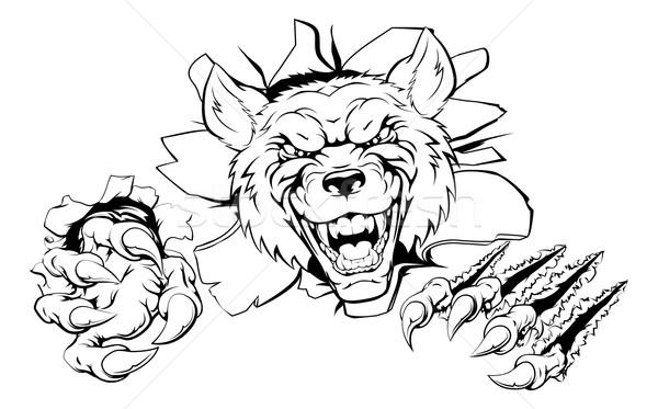Wolf mascot smashing out Stock photo © Krisdog