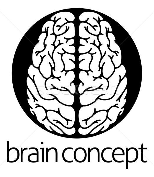 Cervello umano cerchio illustrazione top design medici Foto d'archivio © Krisdog
