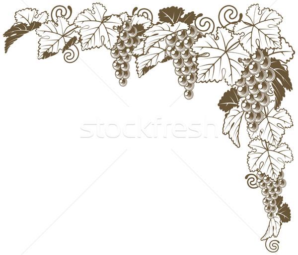 Druif wijnstok hoek ornament grens Stockfoto © Krisdog