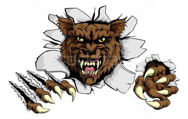 Zły wilk sportowe maskotka przełom Zdjęcia stock © Krisdog