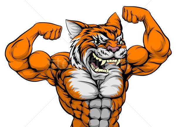 Tigre homem mascote animal esportes Foto stock © Krisdog