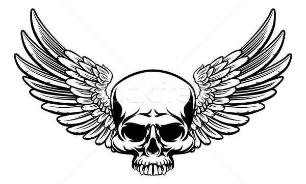 Winged Skull Stock photo © Krisdog