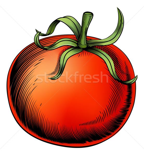 Tomato vintage woodcut illustration Stock photo © Krisdog