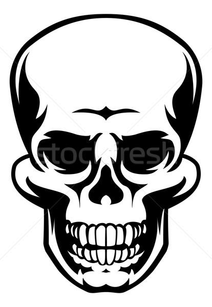 Ludzi czaszki ikona ilustracja przerażający Zdjęcia stock © Krisdog