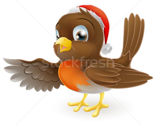 Christmas Robin bird pointing Stock photo © Krisdog