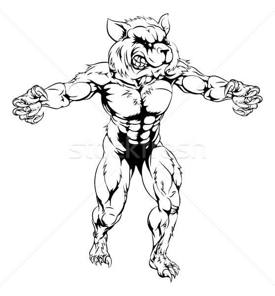 Raccoon scary sports mascot Stock photo © Krisdog