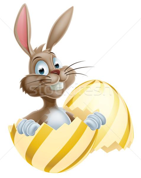 Easter Egg Bunny Stock photo © Krisdog