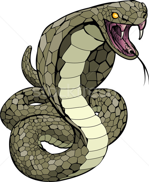 Cobra snake about to strike illustration Stock photo © Krisdog
