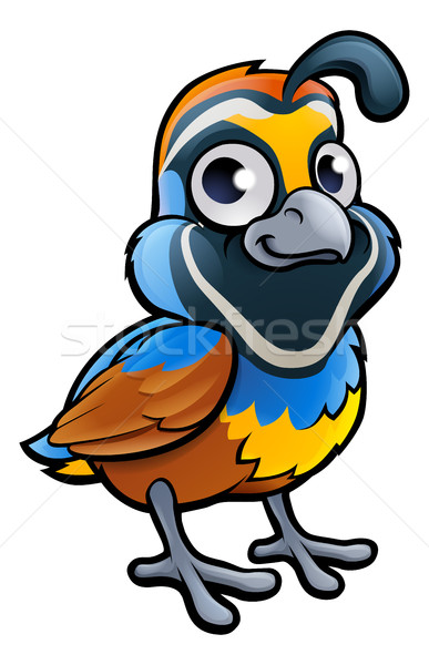 Quail Bird Cartoon Character Stock photo © Krisdog