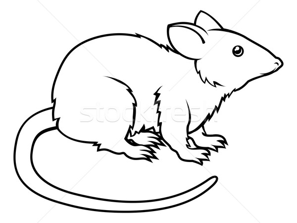 Stock photo: Stylised rat illustration