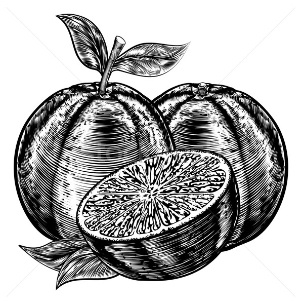 Vintage Woodcut Sliced Oranges Stock photo © Krisdog