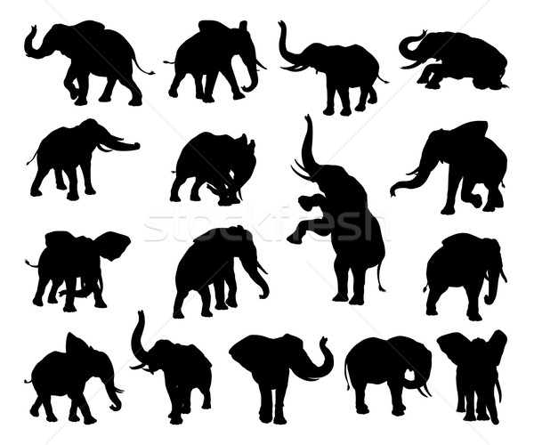 Elephant Animal Silhouettes Stock photo © Krisdog