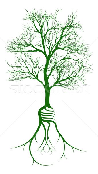 Villanykörte gyökerek fa növekvő alakú növekedés Stock fotó © Krisdog